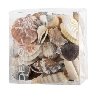 Assortiment de coquillages de mer en boite de 600 ml 663547