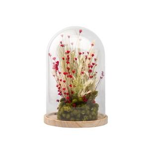 Cloche de fleurs séchées rouges taille S Ø 14 x H 21 cm 663573