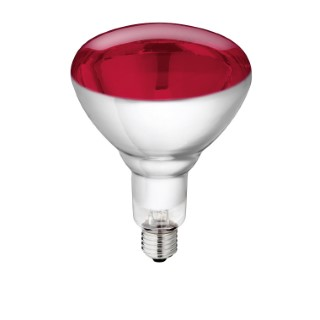 Lampe infrarouge Philips de 150 W en verre rouge renforcé 663656
