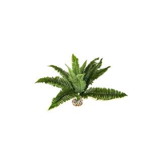 Fougère verte en tissu pour terrarium 30 x 45 cm 663977