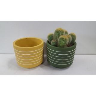 Cache-pot Ciment Cactus Ø 8,5 cm Grès (4 assortis) 665648
