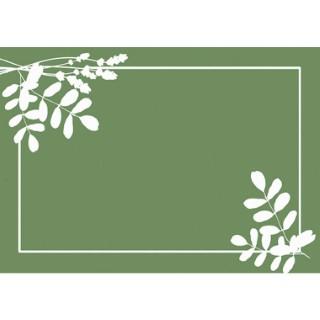 Paillasson Vertueux vert 58x39 cm 666703
