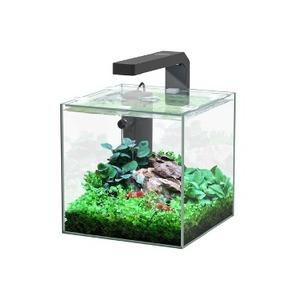 Aquarium Nano Equipé 22L cube avec éclairage et filtre intégré 672360