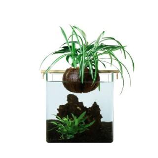 Filtration naturelle Coco Garden pour aquarium < 20L 672743