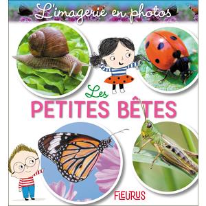 Les petites bêtes – l'imagerie en photos aux éditions Fleurus 674996