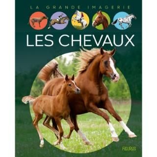 Les chevaux aux éditions Fleurus 675183