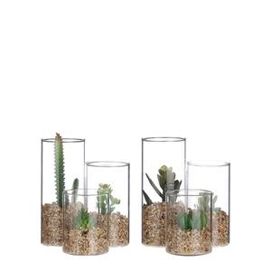 Succulente verte artificielle en pot transparent H 13 x Ø 11 cm 680135