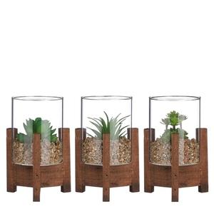 Succulente verte artificielle en pot verre et bois H 15 x Ø 10 cm 680214