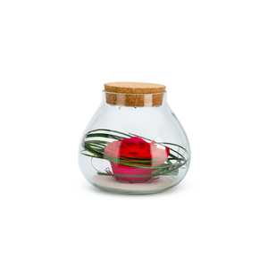 Verrine bulle light rouge taille S Ø 15 x H 14 cm 682346