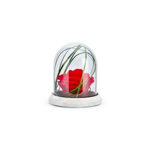 Verrine cloche Cim rouge taille S Ø 12 x H 14 cm 683668