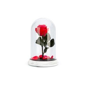 Verrine cloche Cim rouge taille L Ø 14 x H 22,5 cm 683886