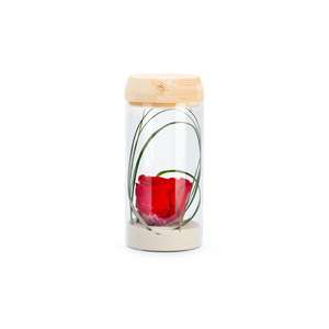 Verrine tube light rouge taille S Ø 8 x H 18 cm 683888