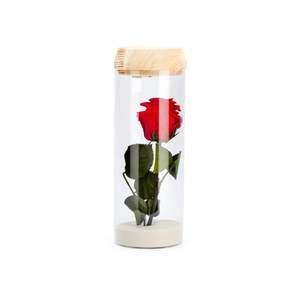 Verrine tube light rouge taille L Ø 8 x H 23 cm 683890