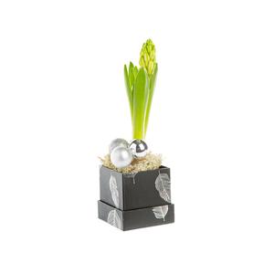 Jacinthe X1 Boite Chapeau Plume Noir/Argent 693309