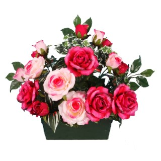 Coupe rose bouton 694295
