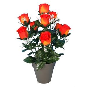 Pot bouton de roses 694296