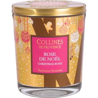 Bougie parfumée Collines de provence senteur Rose de Noël 180g 694312