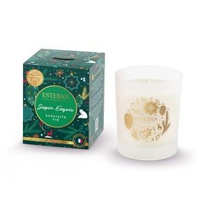 Bougie parfumée sapin exquis 170 g 694408