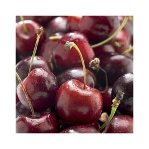 Cerisier délice de malicorne rouge en pot de 12 L 694877