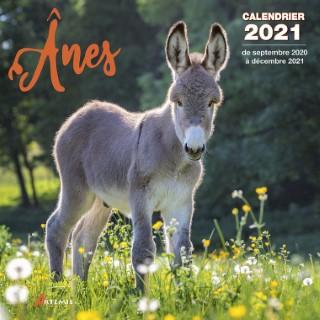 Calendrier ânes 2021 éditions Artemis 696455
