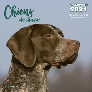 Calendrier chiens de chasse 2021 éditions Artemis 696459