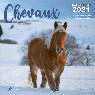 Calendrier chevaux 2021 éditions Artemis 696466