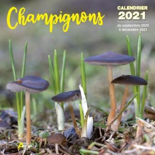 Calendrier champignons 2021 éditions Artemis 696469