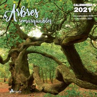 Calendrier arbres remarquables 2021 éditions Artemis 696475