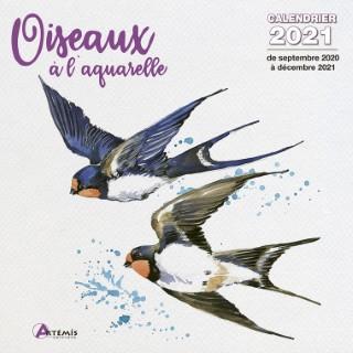 Calendrier oiseaux à l'aquarelle 2021 éditions Artemis 696488