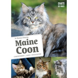 Maine Coon 696521