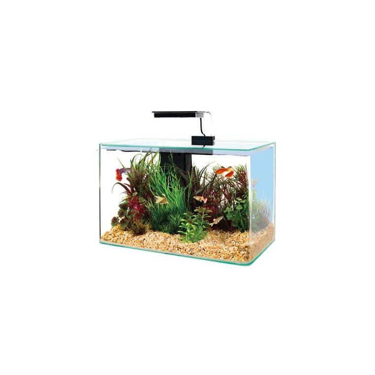 Kit aquarium équipé 17 L Aqua Clear 40 noir 40x20x33 cm 616081
