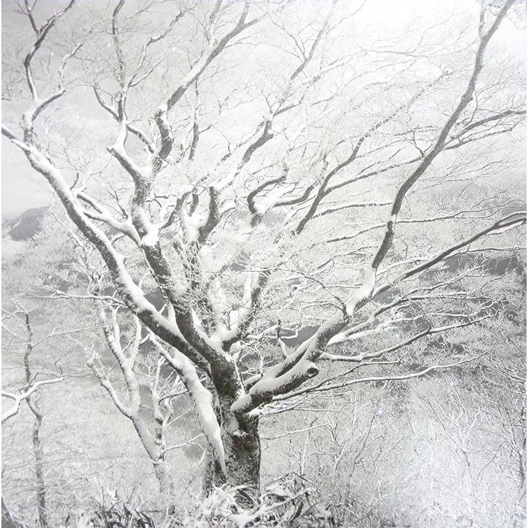 Cadre Lumineux - 40x40 cm 616655