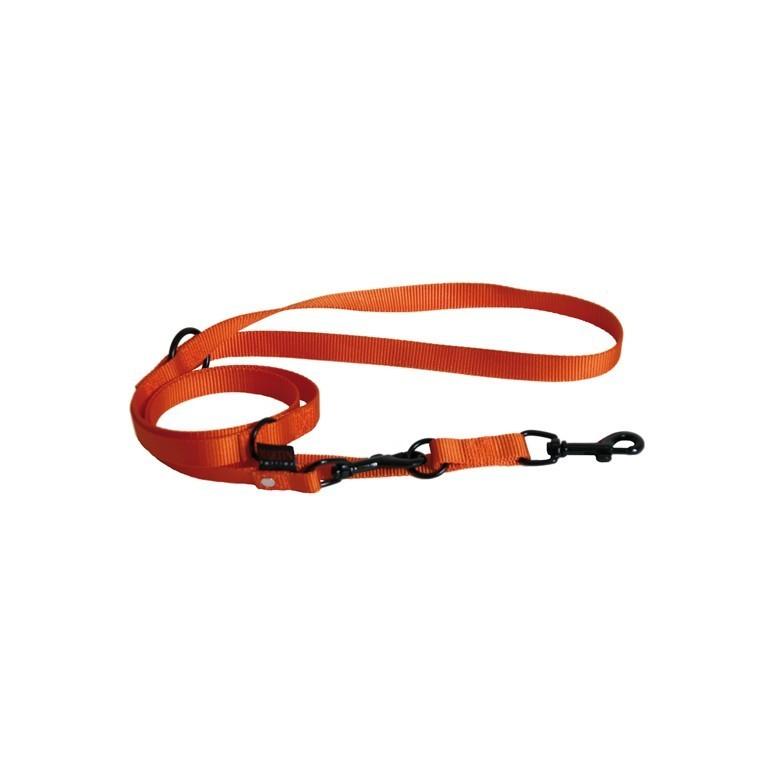 Laisse dressage 3pt orange 626719