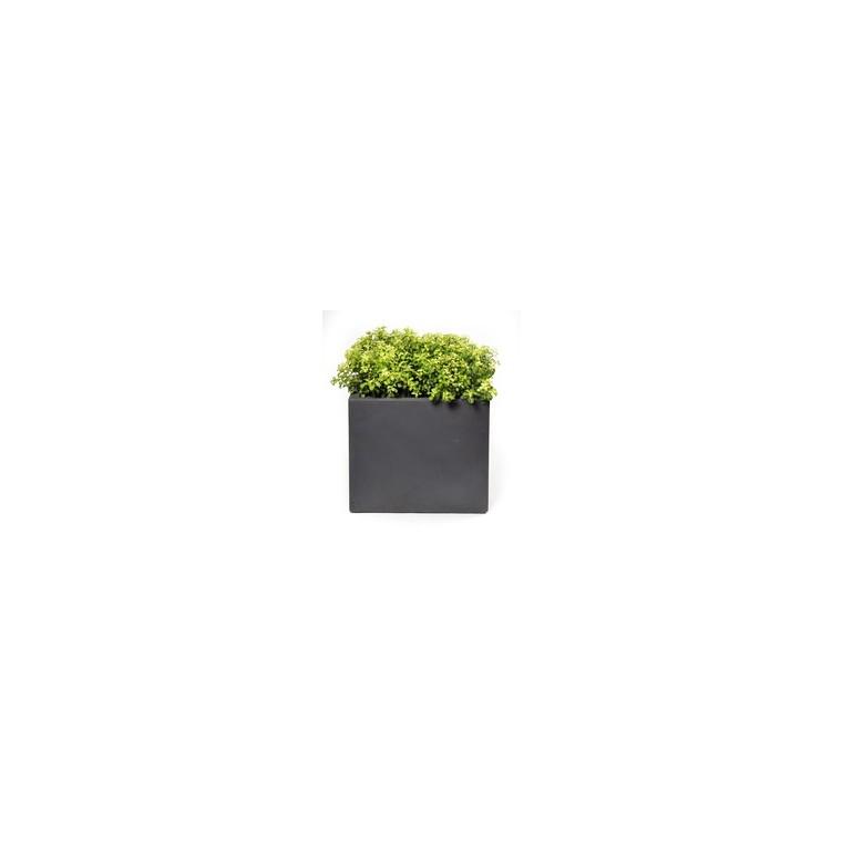 Pot carré GENEVE 55x55xH.46 Gris 63691
