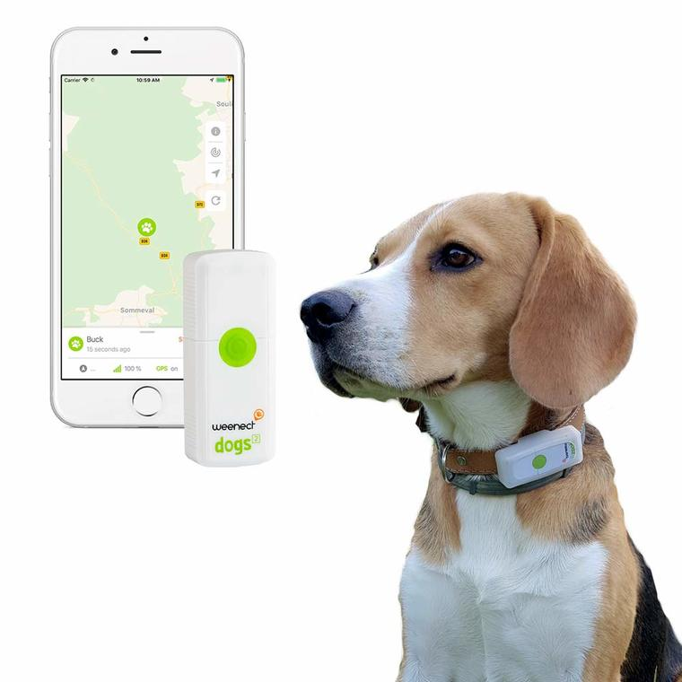 Collier GPS Weenect Dogs 2 pour chien blanc / vert 648690