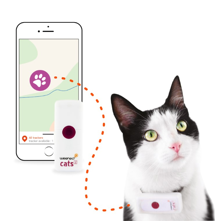 Weenect Cats 2 – Collier GPS pour chat 648691