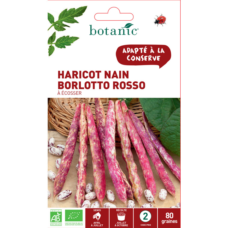 Sachet Haricot nain borlotto rosso bio 80 graines blanc 657524