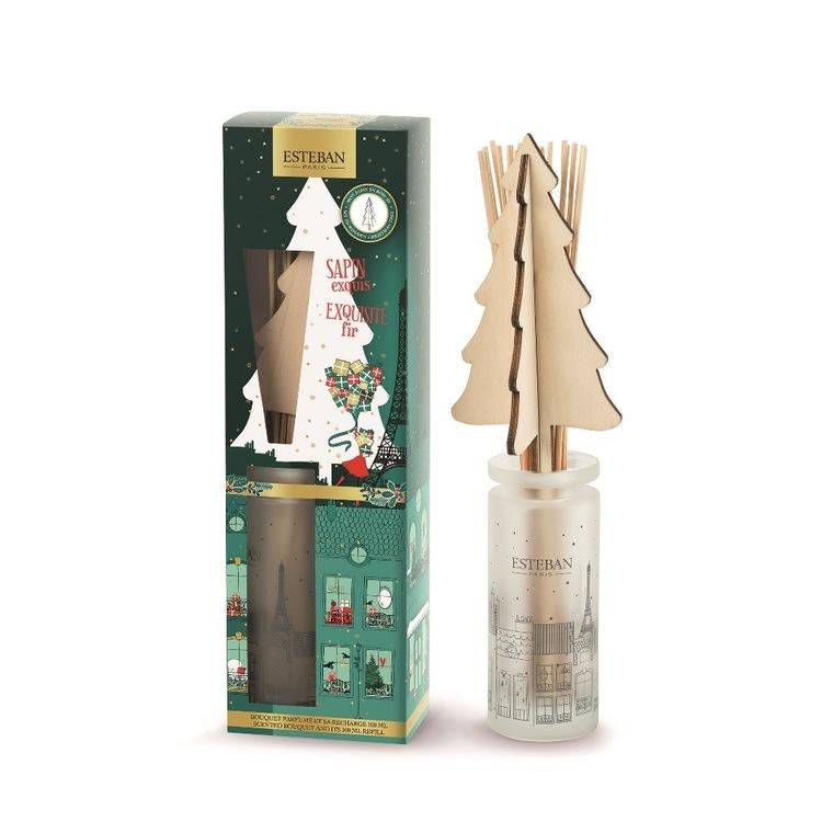 Bouquet parfumé Sapin Exquis et sa recharge de 100 ml boite Noël verte 660275