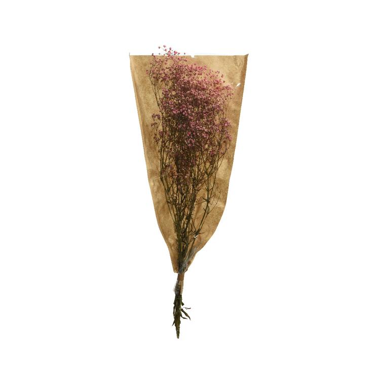 Bouquet de gypsophile séché rose 25x10x50 cm 662406