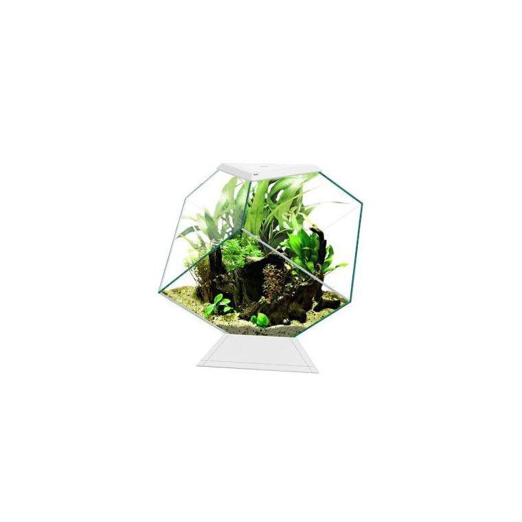 Aquarium Nexus Pure Diamond blanc - 14 L - L.35 x l.42 x H.37 cm 669960