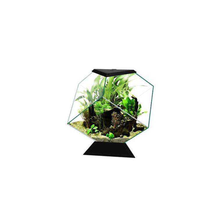 Aquarium Nexus Pure Diamond noir - 14 L - L.35 x l.42 x H.37 cm 669980