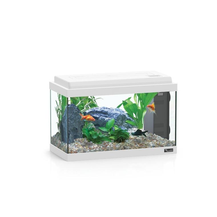 Aquarium 60LEDBIO 60 litres 60x30 cm  672354