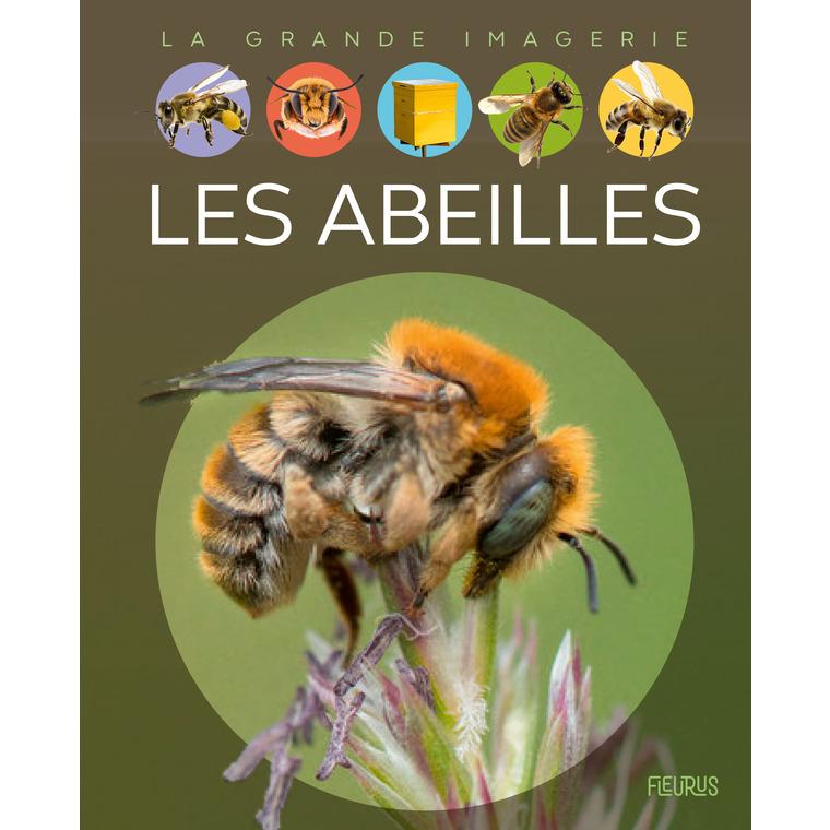 Les abeilles aux éditions Fleurus 675186