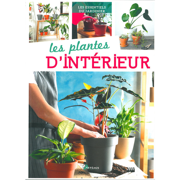 Les plantes d'intérieur aux éditions Artemis 677792