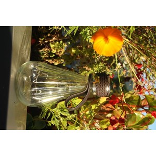 Ampoule à poser Ziggy à 8 mini LED H 18 cm 700704