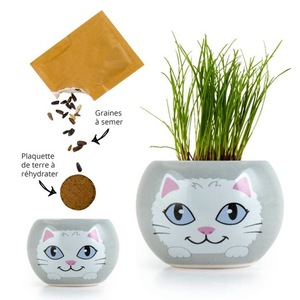 Kit prêt à semer en pot gris décor Chat blanc 703023