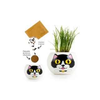 Kit prêt à semer en pot blanc décor Chat noir 703026