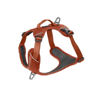Harnais Momentum Taille 1 Circonférence cage thoracique 33-44cm Cuivre 708656