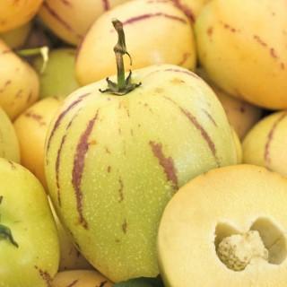 Pepino Poire Melon bio. Le pot de 1 litre 709513