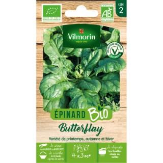 Épinard Butterflay bio Série 2 ' 709881